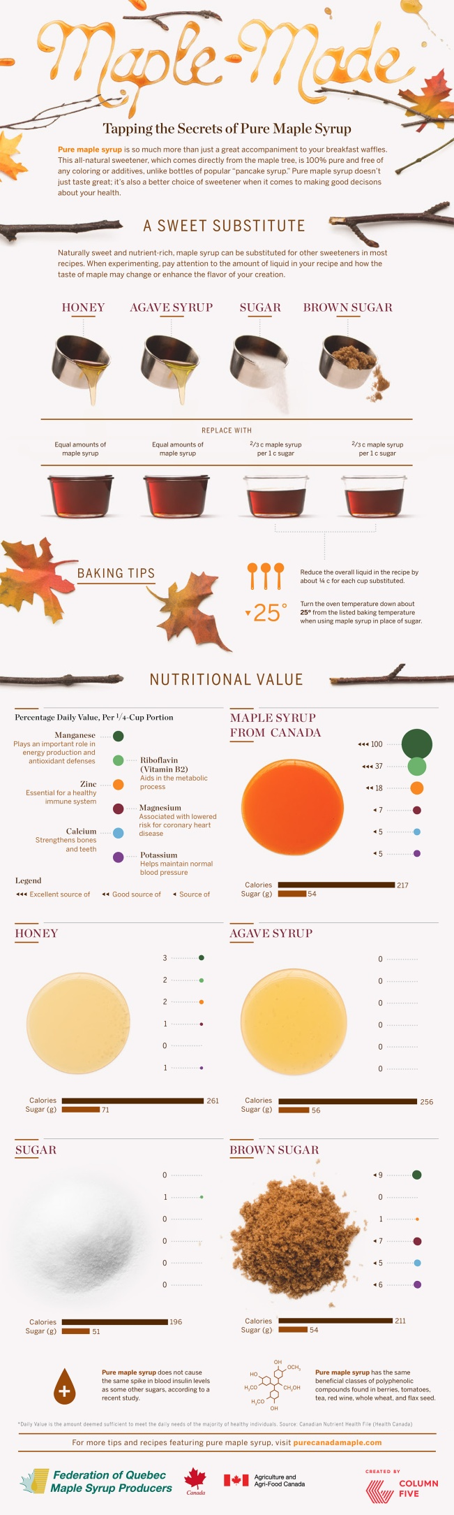 maple-sugar-alternative-infogrpahic-lg (1)